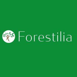 Forestilia_4x4